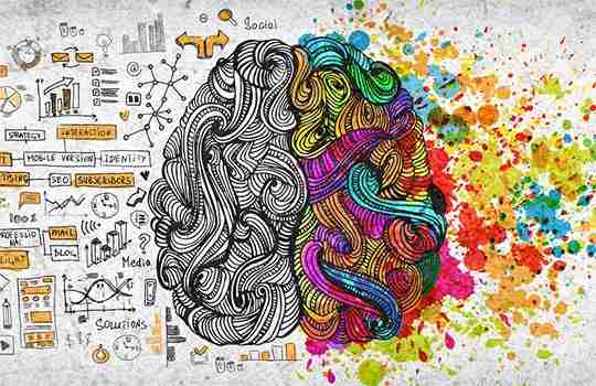 artistic impression of left brain (structure) versus right brain (creativity)